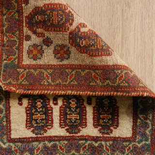 Unusual botteh bag face, Persian (could be of a Bakhtiari chanteh) fine weave, natural colors in good condition. parts of kilim remaining.  29,5 x 39 cm.