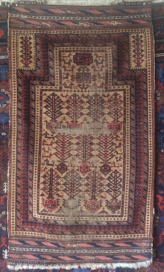 Baluch camel ground prayer rug with animals, abstracted shrubs, and a Shi'a inscription that reads, 'Allah Muhammad Ali Hassan Hussein' kilim ends preserved.