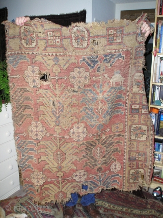 Mystery Rug Fragment, a sub-group from the so-called 'Golden Triangle' area group of rugs most frequently found in Tibet. Perhaps a 17th century Caucasian or Northwest Persian fragment. Dig the camels. Less  ...