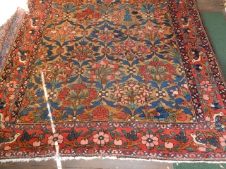 THIS ANTIQUE BAHKTIARI CARPET HAS A NICE GOLD FIELD OF EVEN COLOR.  LARGE SIZE OF 6 1/2 FT X 10 FT . GOOD PILE, SIDES AND ENDS ....  AN ANTIQUE CARPET IN GOOD CONDITION  ...