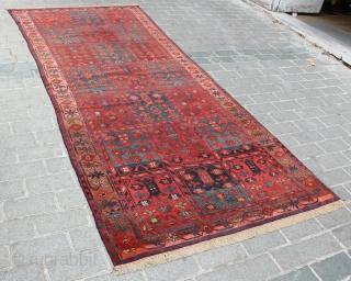 "Kyrgyz Rug 10558 almost 160 x 386 cm = 6.18 m2 62.99"" x 151.97"" 5.25' x 12.66'"