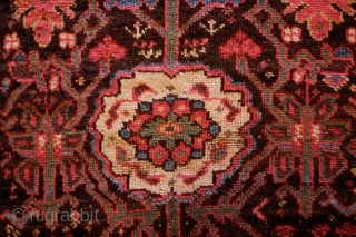 Sauj Bulak Kurdish Rug, Late 19th Century.  All great Sauj natural colors on a rich dark ground.  Safavid derivative floral motifs and Kashmir shawl-like borders.  Lower pile in the  ...