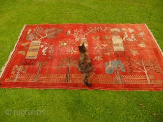 Charming 1930's Khotan 'landscape' rug decorated with trees, vases and birds - convincing enough to make a cat curious (see image 5). Condition, some areas of wear and old moth damage but  ...