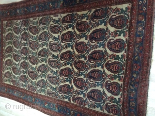 Antiq Bidjar , very special Bidjar  carpet, with unusual pattern formed as botte, in good condition with no repairs, ages must be considered, size 214 x 136 