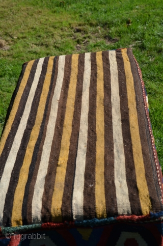 """Shahsavan flat woven mafrash. 40"""" X 18' wide X 20"""" deep. Circa 1900. Wool and cotton. Natural dyes. Geometric slit woven designs with soumac decorated stripes. Excellent original unrestored condition."""