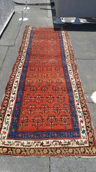 "Kurdish/Caucasian Runner, circa 1870-1880, 4' x 12'-4"", Swastika Border, fantastic colors, minor oxidation to the brown needs attention, washed and ready for use."