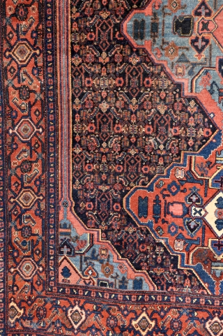 Early 20th century Senneh. Bright natural colors. 194cm x 138cm P
