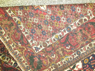 Antique Persian Bakhtiary rug.