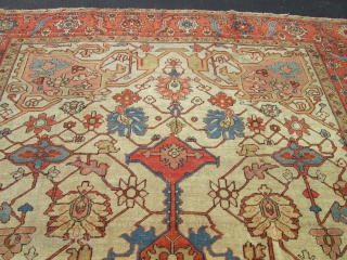 Antique Serapi .