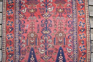Afshar frag 97x170cm
