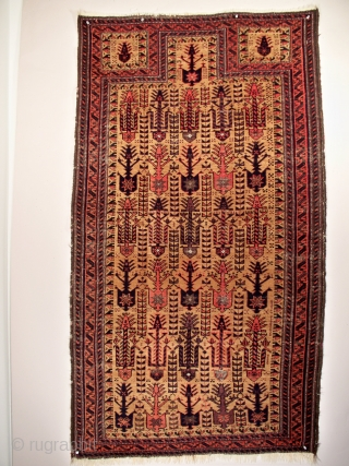 "Baluch prayer rug, Northeast Persia, 36"" x 64"" (91 x 162 cm),circa 1880. This rug appears to be earlier than many of the published examples. Its field display of zoomorphic figures is  ..."