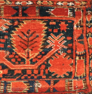 Middle Amu Daria turba with palmette design.  19th Century.  Vibrant reds, but good dyes. White cotton used in pile and wefting.  Warps dark brown goat hair.  Knots open  ...
