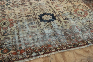 Worn and very pretty pale yellow ground Mahal carpet circa 1920, with cherished allover pattern. 298 x 395 or 10' x 13. Worn and without pile in places, one part is just  ...