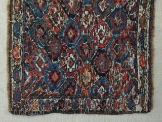 Shahsavan  sumack bagface. Size: 50x47cm / 20x18 inc