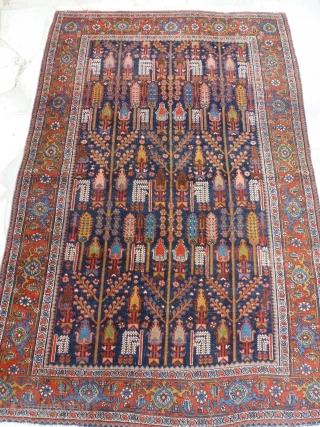 Feragan  210 x 140   Nice colors, garden decor, low pile but acceptable.