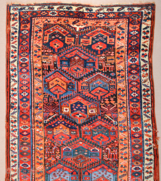 """This Middle of the 19th Century Kurdish rug was woven in the mountainous region surrounding Lake Urmia. Items of this kind are known as """"Sauj Bulag"""", a name that derives from their  ..."""