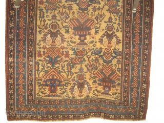 Afshar persian, knotted circa in 1915 antique, 138 x 175 cm, carpet ID: DD-35 The background color is saffron/yellow, allover vase design surrounded with birds, in good condition, rare example.