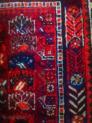 This is a quite old Qashqai rug (also known as Shiraz). It comes in 260 * 164 cm. Shiny natural dyes and excellent condition except for some damages by moth on the  ...