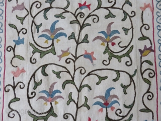 """Uzbekistan Shahrisabz antique suzani, silk embroidery on hand loomed """"karboz"""" cotton. Some fine repair on corroded brown, printed ikat backing. size: 52"""" X 38"""""""
