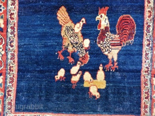 This family of free range chickens is happily living in this extremelly fine woven Persian rug, but are looking for a forever home (preferably vegetarian owners!). Great colours and shinny wool.   62x60  ...