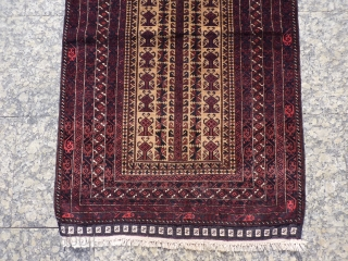 Fine weave Persian Belouchi prayer rug soaking up the late autumn sun, 140x89cms, camel wool beige and undyed wool white, tip top condition looks like never used, original kilim ends intact, from  ...