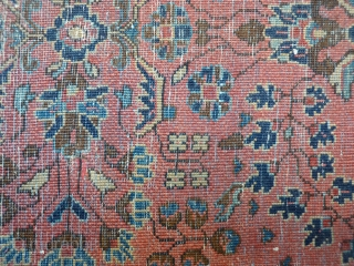 Persian Lilian Pushti, full pile, circa 1910. 70x56cms