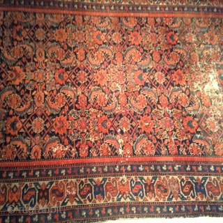 Distressed Malayer Herati design rug, very old and in fairly good condition.