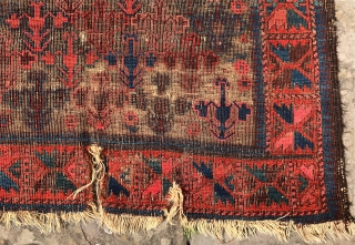 Antique Baluch rug. Lovely shrub design. Poor condition. I doubt the organic content of the pink dye. But a lovely rug any ways. About 5 x 3 foot.