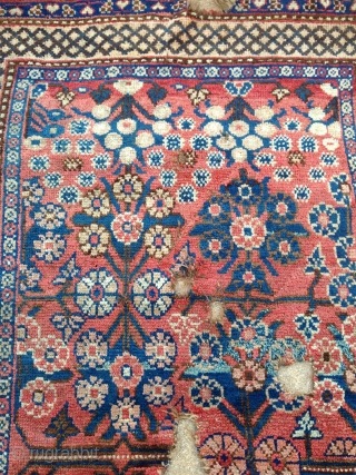 fragment of an early and  very rare east turkestan rug.warps and wefts are all camel hairs as the brown pile also is. it is quite thick but has also a very  ...