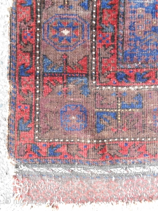 "Extraordinary Timuri Baluch prayer rug (44""x 58""). Fine! Luxurious glossy wool. Ex. Craycraft collection. Mid 19th c. As good as they get!"