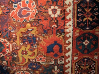Kurdish weavings from Northwest Persia during the 18th and early 19th century are some of the most vibrant and dynamic from any region or group during the post-classical period. This magnificent Kurdish  ...