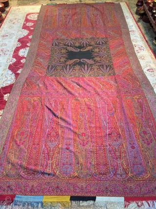 Live auction a rare beautiful Indian Shawl