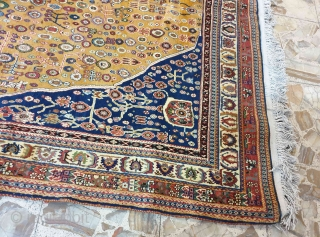 Privileged Qashqai rug with goldish colour scheme on field,a large number of colours can be seen insofar as it can thrill every viewer Circa 1960 , dimension 320 * 220 cm  State of  ...