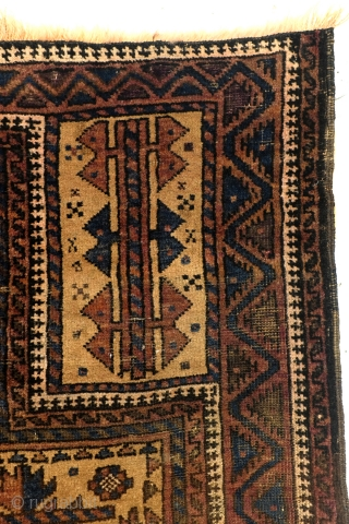 Camel ground. 