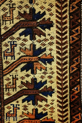 Prayer rug, Beloudj. 
