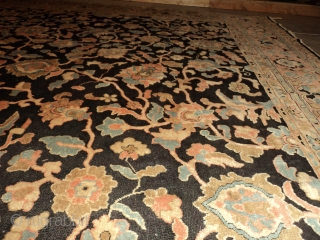 """#7116 Antique Agra Rug from India This third-quarter 19th-century Agra measures 11'1"""" x 15'3"""". It has a black background with a vine and tendril design in   coral, very pale sky blue,  ..."""