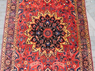 Persian Bahtiar Rug all original amazing wool and colors like serapi and full pile size 3,15x2,10 cm and  Circa 1900-1910