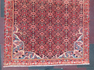 Antique Persian Malayer rug in very nice condition and very nice colours, all original. Circa: 1910-15.