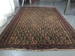 Antique Ghorasan 