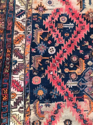 Shirvan-?,  Caucasian carpet, large, size-320-150 cm