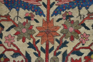 Antique Bakhtiar Rug 195x135cm CIRCA 1900  Magnificent antique Bakhtiar rug from West of Iran. Tree of life design with pigeons on top and beautifully coloured Cypress trees on either side on a cream  ...