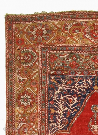 Ghiordes prayer rug, about 1700, higly collectible. Info & similar examples on www.transylvanianrugs.com
