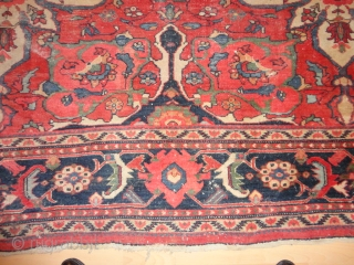 Antique  Ziegler  Sultanabad / Mahal  292 X 375  cm.