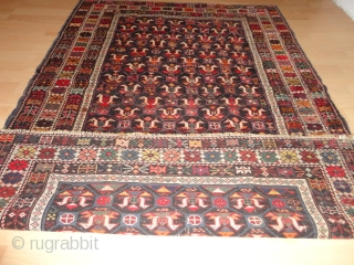 Very  rare  antique  caucasian  birds   Kuba  rug  ,  round  1890