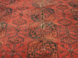 Beautiful antik  Ersari Main carpet 19 th. ca. 253 X 308 cm    Wunderful  colours very rare  archaic pattern , shows wear ,     ...