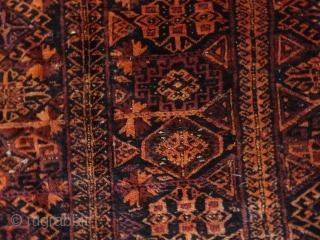 Antique  Belutch  Main  Carpets  168 X 277  cm   Superb natural colours ,      Fine  with  soft  wool ,  ...