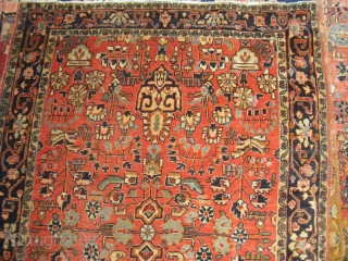Saruk Antique - 1910 - soft kork wool - very clean - size: approx. 100 x 150 cm - shippment worldwide possible