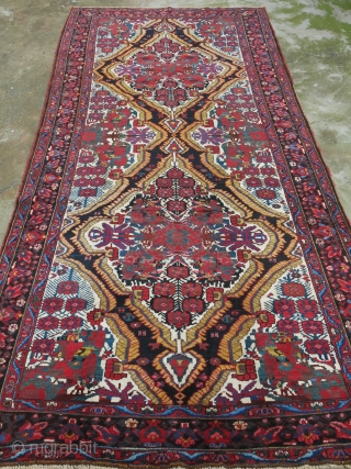 "Baktiari main carpet, fine wool with full pile on cotton, circa 1900 or earlier size: 153"" X 73""  -- 398 cm X 152 cm"