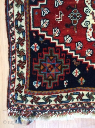 shiraz qhasguli 