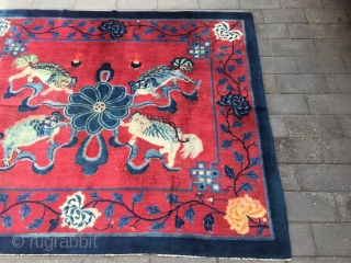 #1906 Baotou rug, It was also produecd in Baotou area in Inner Mongolia. about 120 years old. red background with  lion sporting with an embroidered ball pattern. good quality .size 193*162(75*63'')